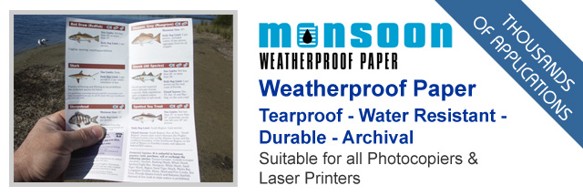 Post image for Monsoon Weatherproof Paper Feature