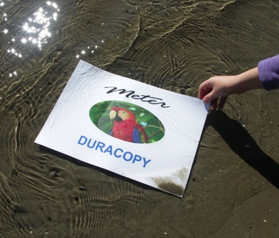 Duracopy Permanent Paper